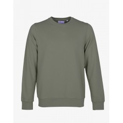 Sweat - Colorful Dusty Olive