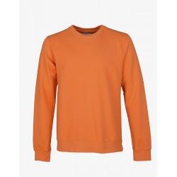 Sweat - Colorful Orange
