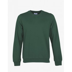 Sweat - Colorful Emerald Green